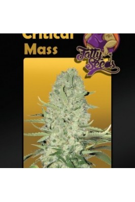 Blue Critical Mass